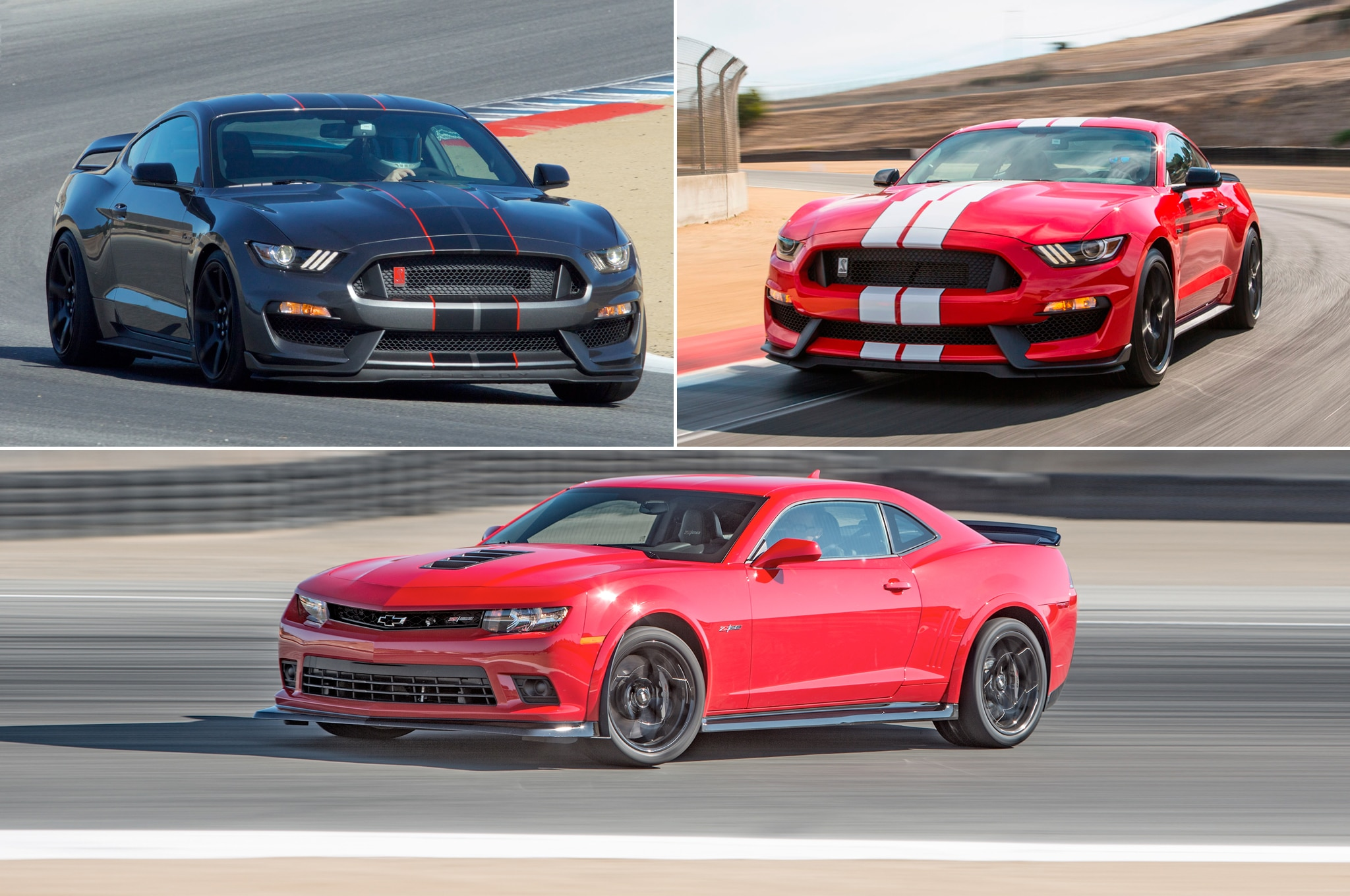 See How The Shelby Gt350 And Camaro Z 28 Compare On The Dyno